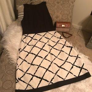 Ann Taylor Dark Brown and White Dress Size 8